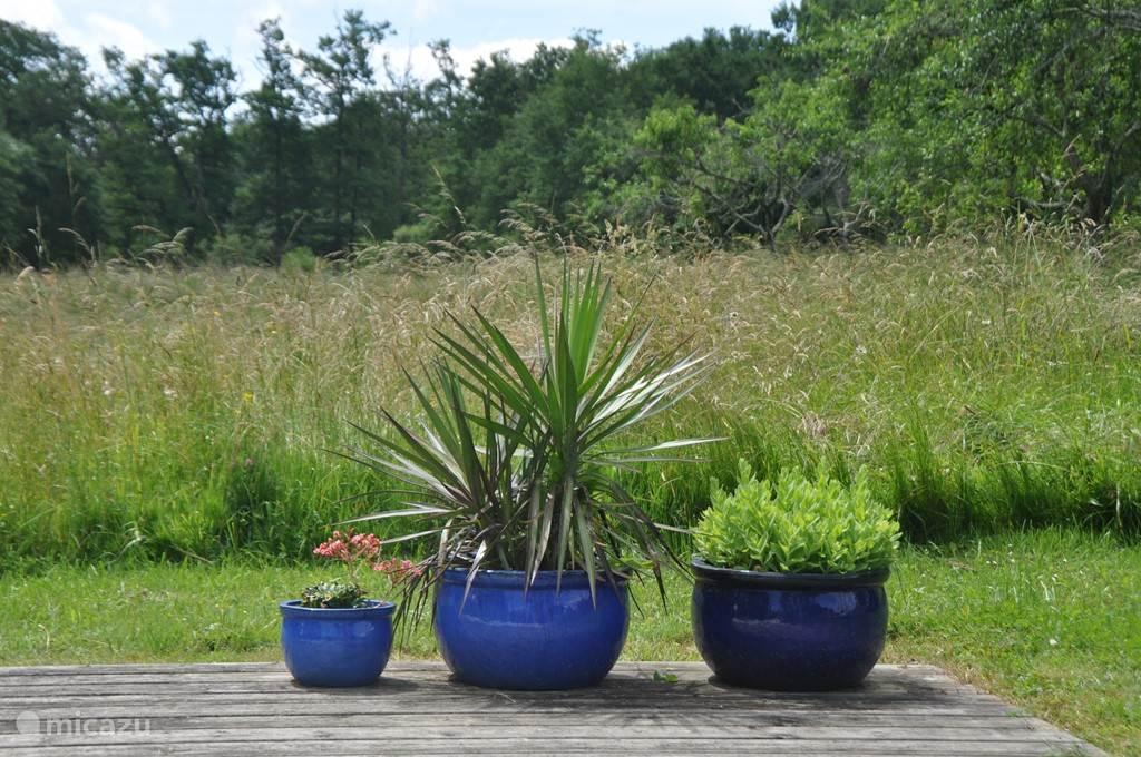 Rondom het zwembad liggen glooiende velden, fruitbomen en lavendel. Een boer in de omgeving maait het gras, soms staat het wat hoger, soms ligt het gemaaid en geperst tot grote rollen te drogen op het land.