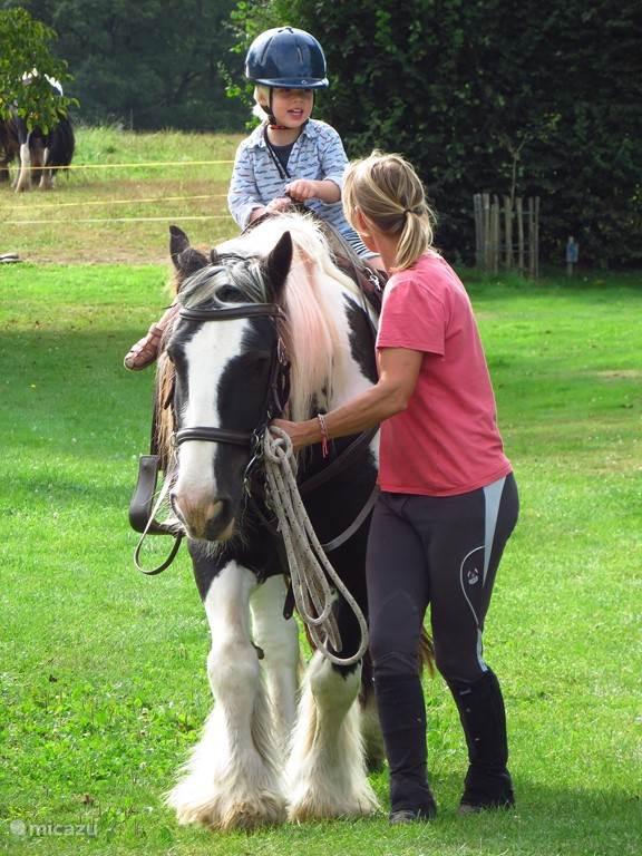 ook de kids kunnen op het paard