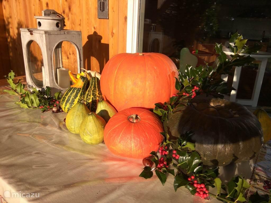 herfst in Het Biggetje!