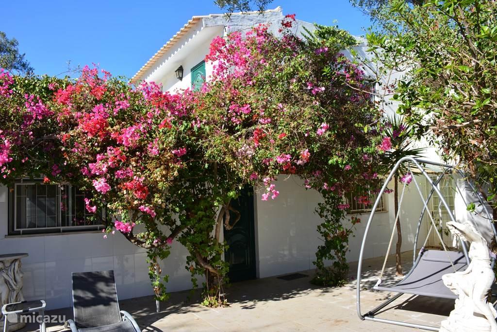 Vakantiehuis Portugal, Algarve, Moncarapacho villa Quinta Botanica - Villa Marabout