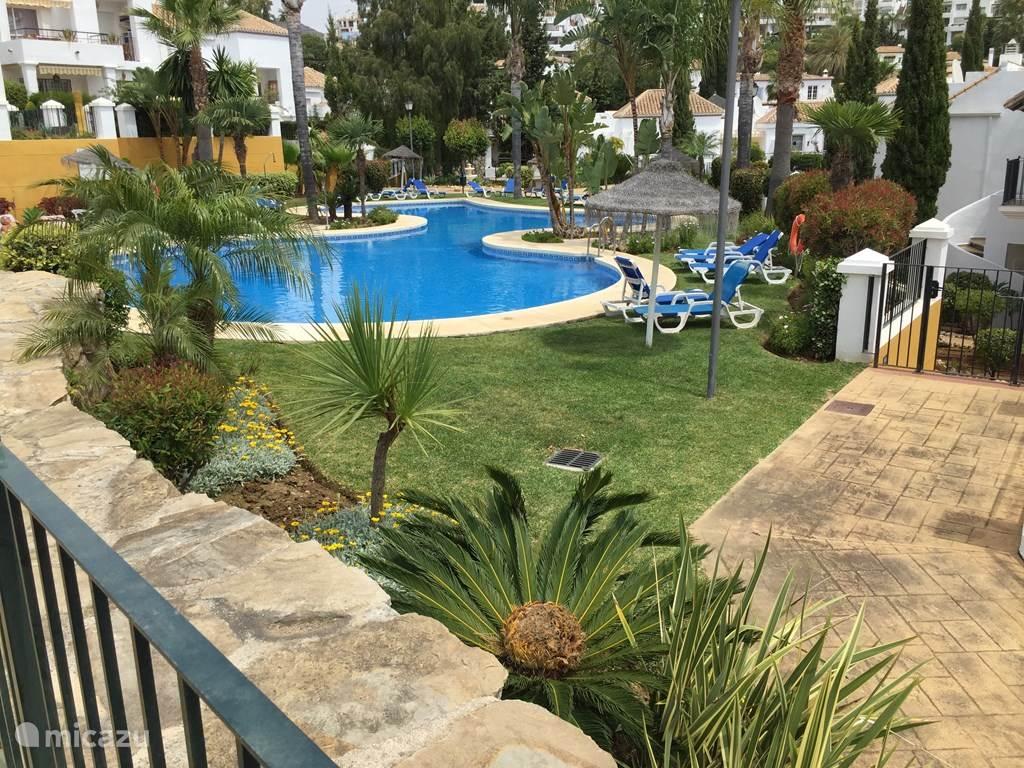 Senorio de Gonzaga's heeft drie zwembaden en zijn alle drie door u te gebruiken. Kiest u maar uit ! Ligbedden en parasols zijn ruim voorradig en gratis te gebruiken.