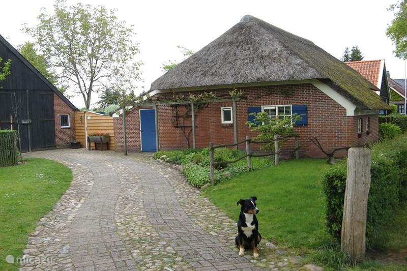 Vakantiehuis Nederland, Drenthe, Exloo Vakantiehuis 't Zwaluwennest
