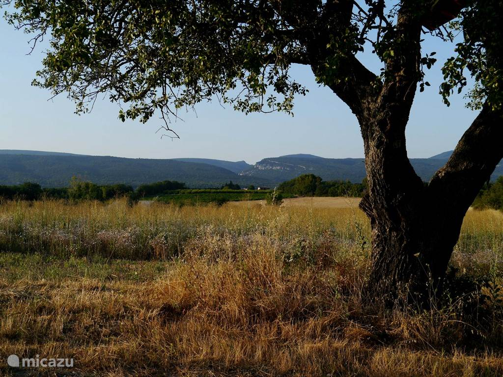 uitzicht op de Vaucluse