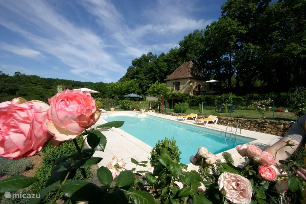 Zwembad met volledige privacy en prachtig uitzicht.