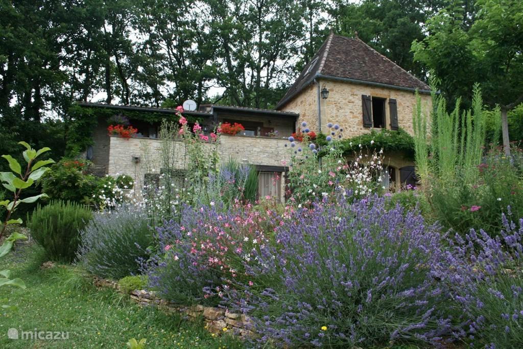 Vigne de Montagne met een kleurrijke voorgrond.