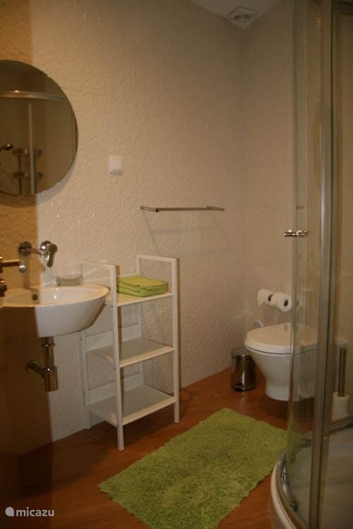 De kleinere badkamer met douche, toilet en wastafel