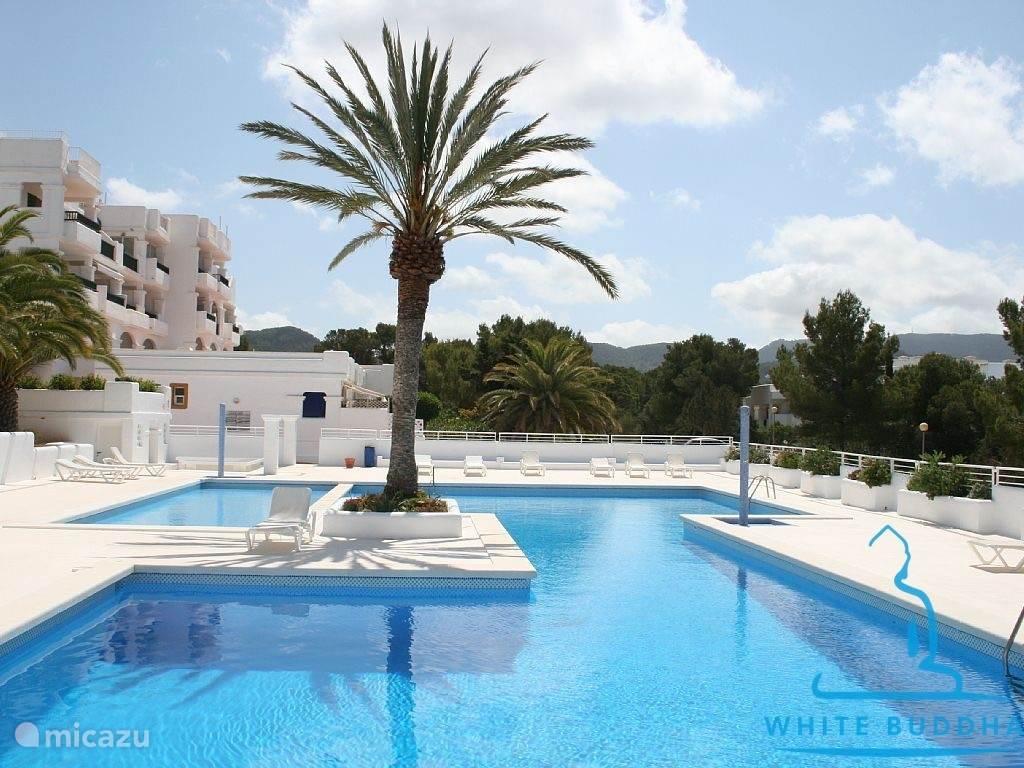 Vakantiehuis Spanje, Ibiza, Cala Tarida - appartement White Buddha