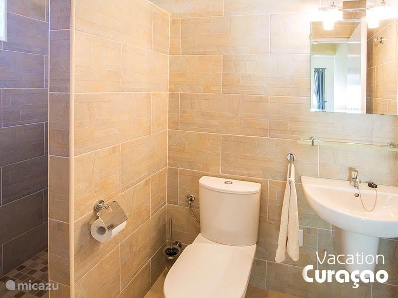 Luxe badkamer met douche (warm water), wastafel en wc