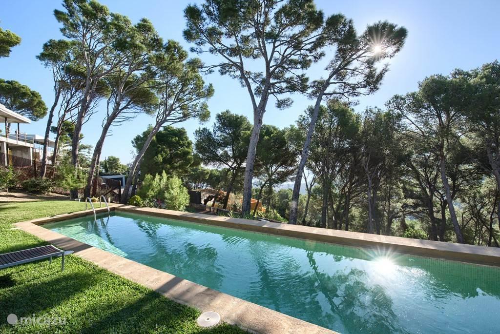 Het zwembad is een extra lang zwembad, betegeld met mooie groene tegels waardoor het prachtig past in de groene omgeving.