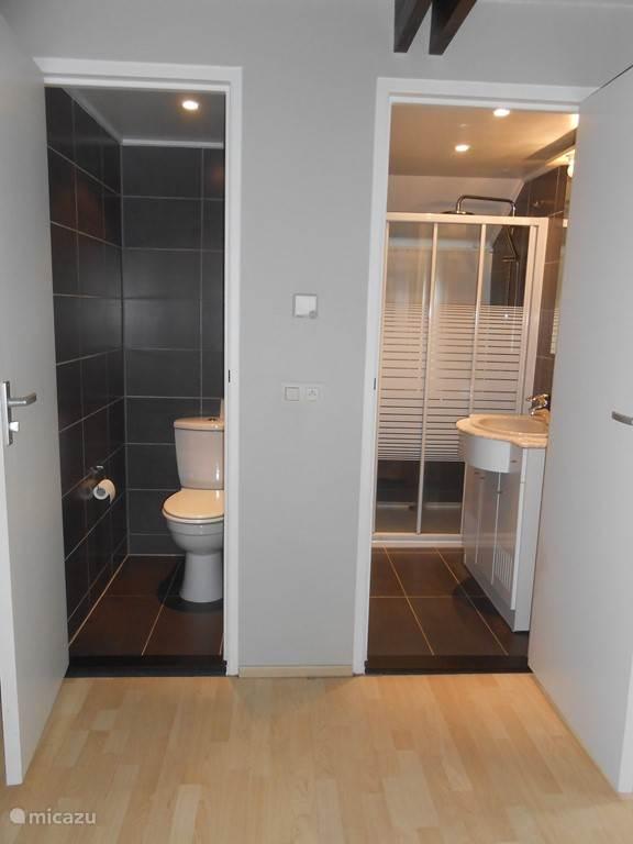 bathroom with rain shower and separate toilet next door.
