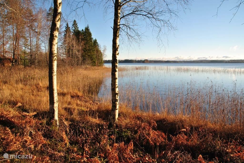 Prachtige natuur in de herfst!