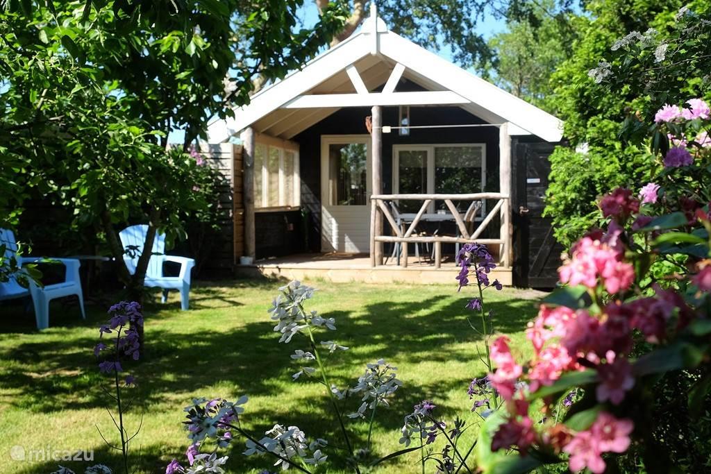 Vakantiehuis Nederland, Noord-Holland – gîte / cottage De Grote Bonte Specht