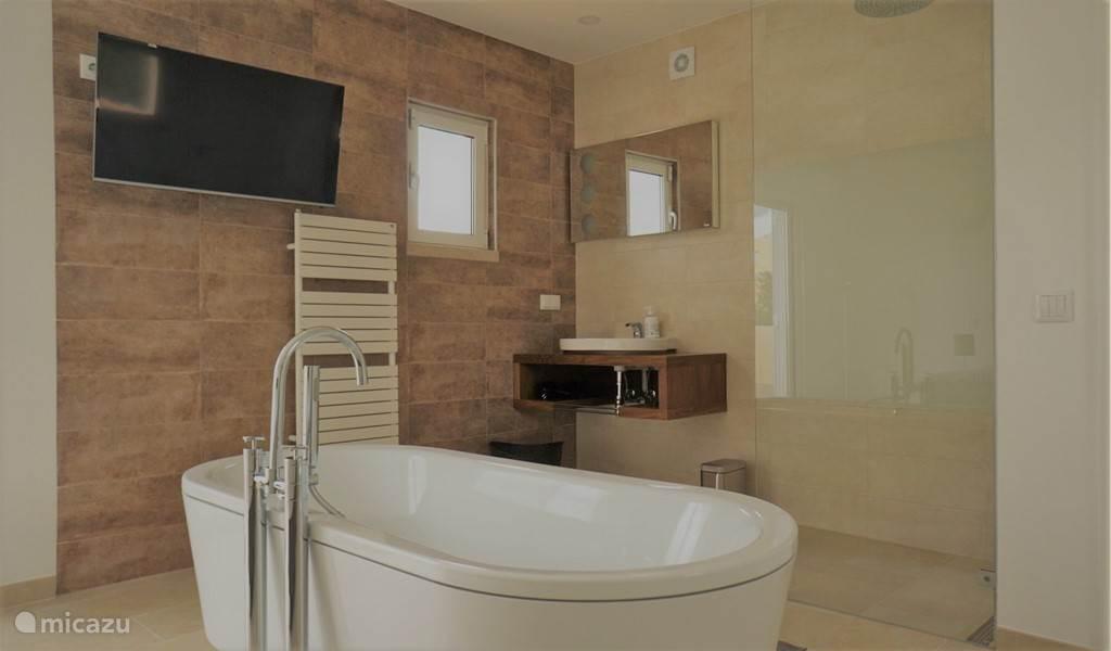 Ligbad, regendouche of HDTV. Het is lastig kiezen. Alle drie tegelijk kan ook!