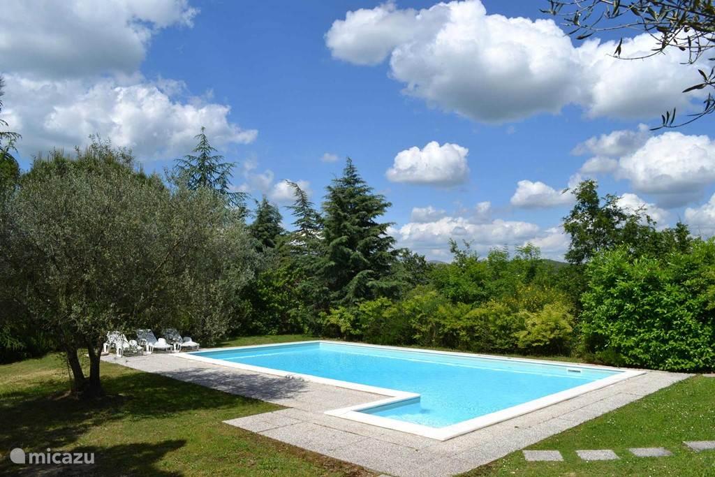 Zwembad + tuin