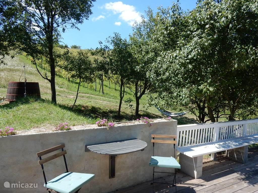 uitzicht op de wijngaard en antieke wijnkuip voor een koud bad en hangmat in de schaduw