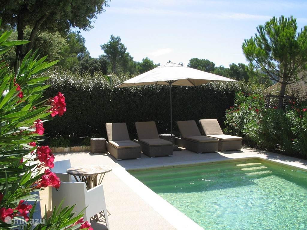 Privé zwembad behorend bij de villa