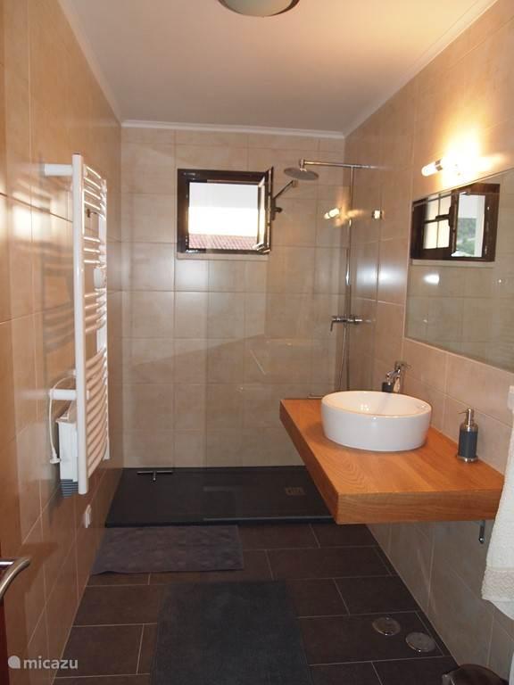 Badkamer boven met inloopdouche, wastafel, toilet, verwarming en haardroger.
