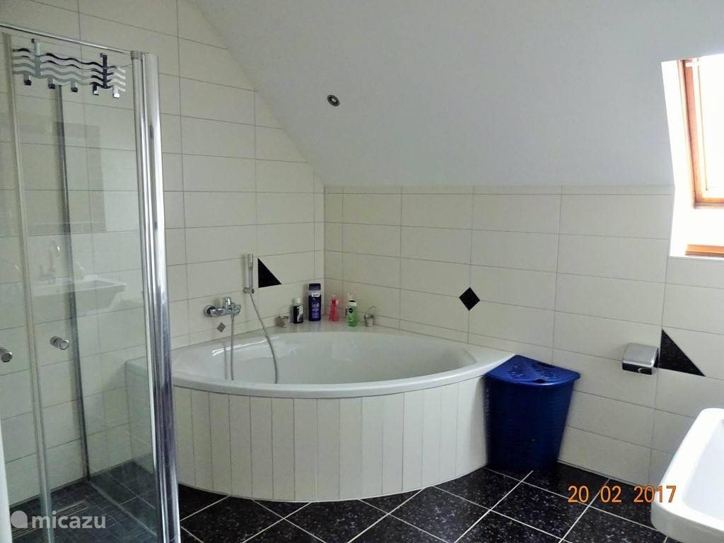 De ruime badkamer heeft een inloopdouche en een groot bad.