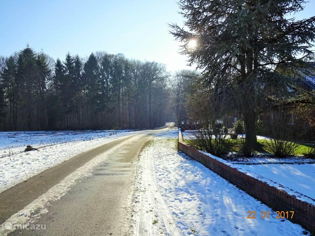 Ook in de winter is het fijn wandelen in het Herrenholz!