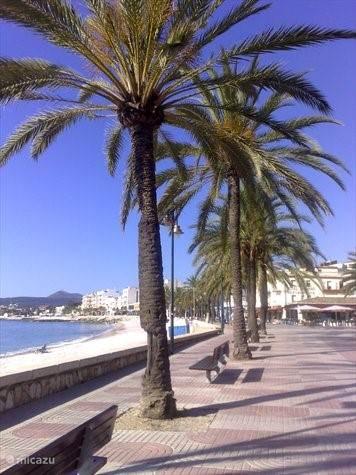 Boulevard in de haven