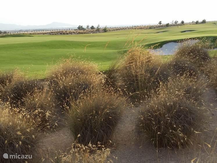 Zijwaarts uitzicht vanaf het terras op de golfbaan.