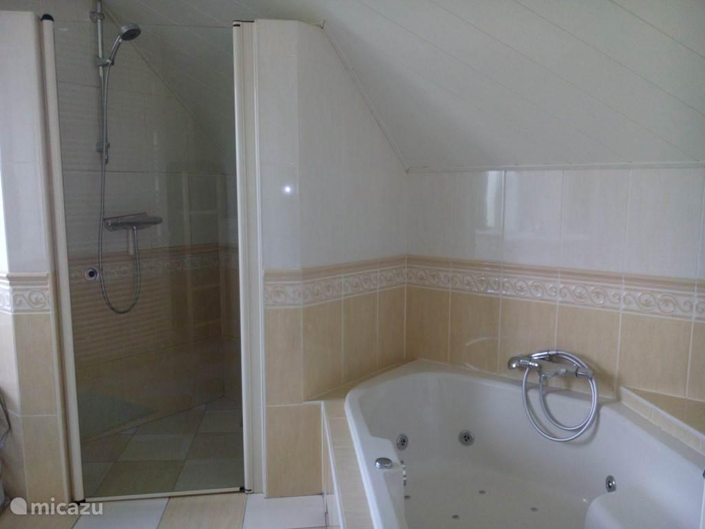 De badkamer, de douche en het jaccuzi
