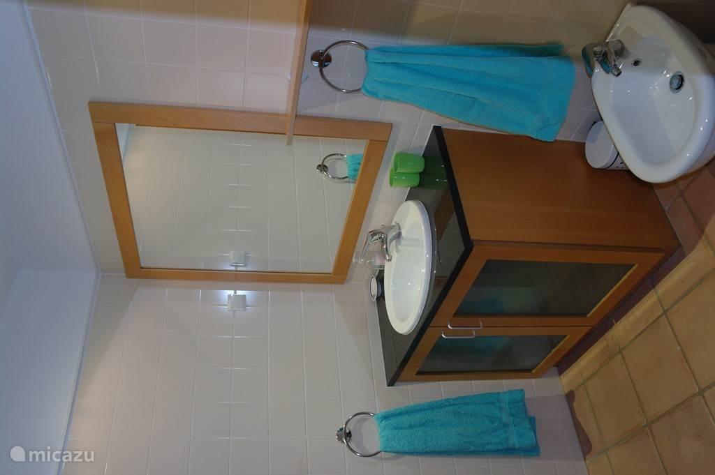 wastafelkast met spiegel 2'de badkamer