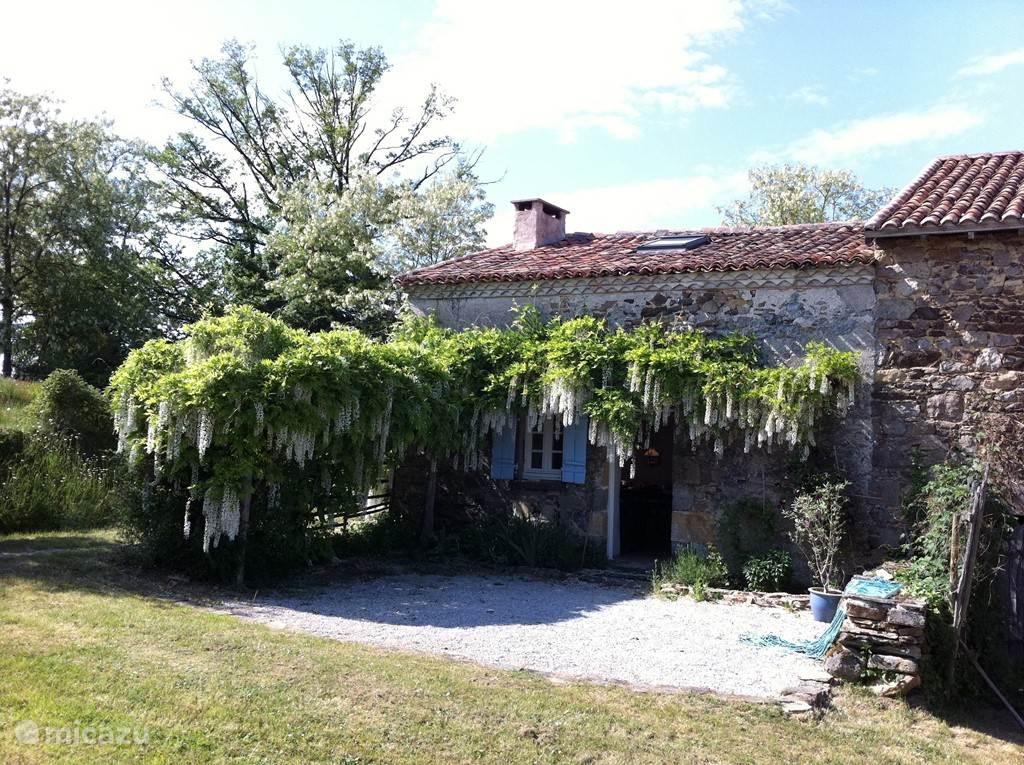 kleine huis met wistula
