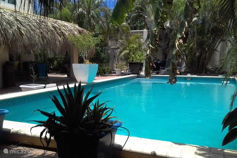 Ferienwohnung Curaçao, Curacao-Mitte, Julianadorp Appartement unsere paradijsje