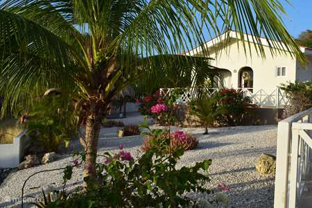 Vacation rental Curaçao, Banda Abou (West), Fontein bungalow Bungalow + pool and jacuzzi Blenchi