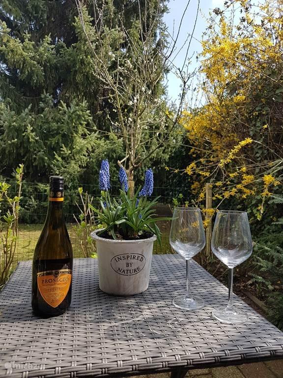 Heerlijk privé terras in de tuin
