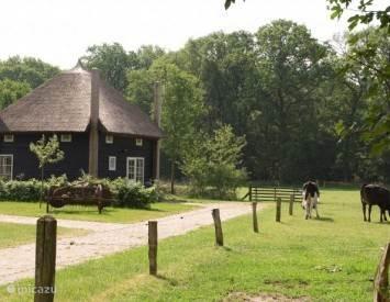 Vakantiehuis Nederland, Overijssel, Enter vakantiehuis Biologische Boerderij Het Exoo