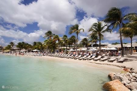 Mambo, Seaquarium, Wet & Wild, Cabana