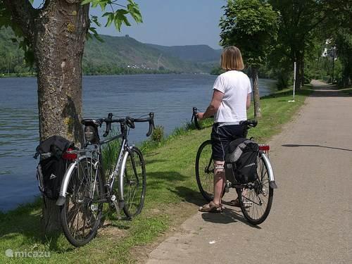 fietsen in de omgeving