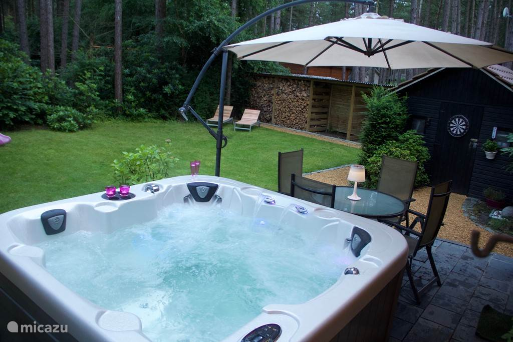 The jacuzzi and garden