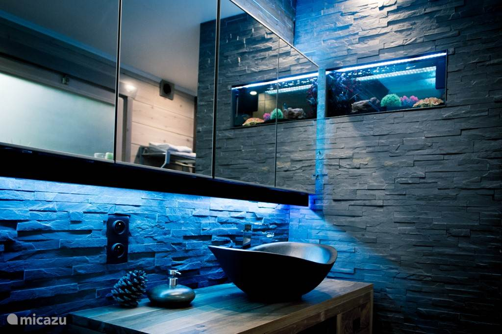 Modern bathroom with shower and an aquarium with colorful fish.