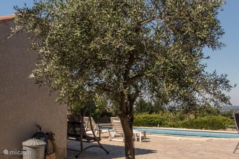 Vacation rental France, Hérault, Oupia Villa Rose Vallea villa with pool France