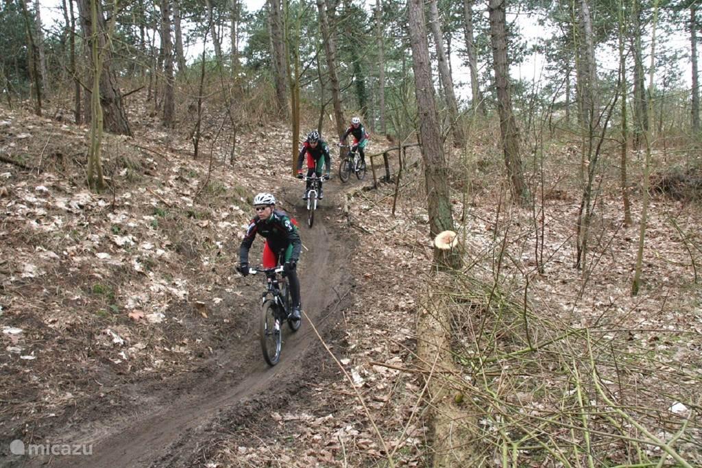 Mountainbiken in het bos