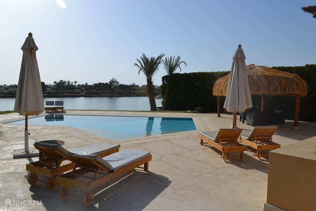 Achtertuin met zwembad, patio en pergola