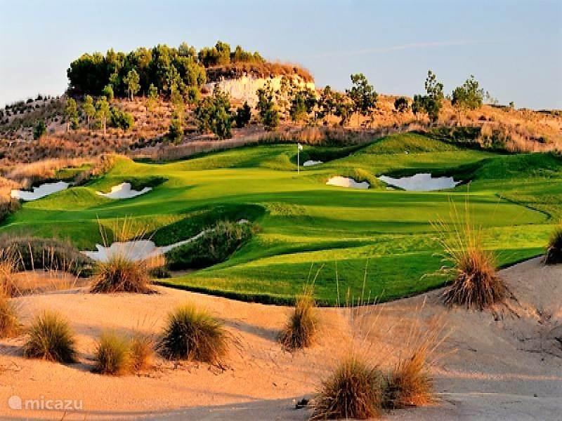 veel golfbanen in de regio