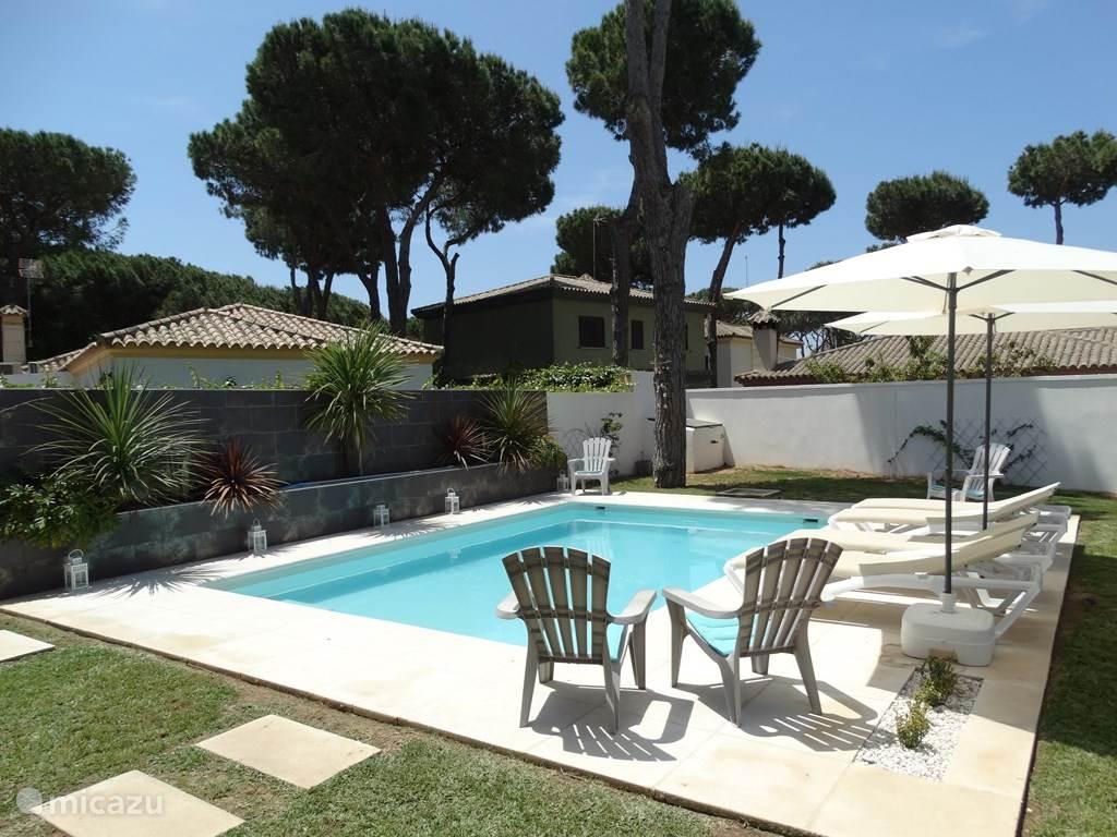Onze geweldig mooie tuin met zwembad.
