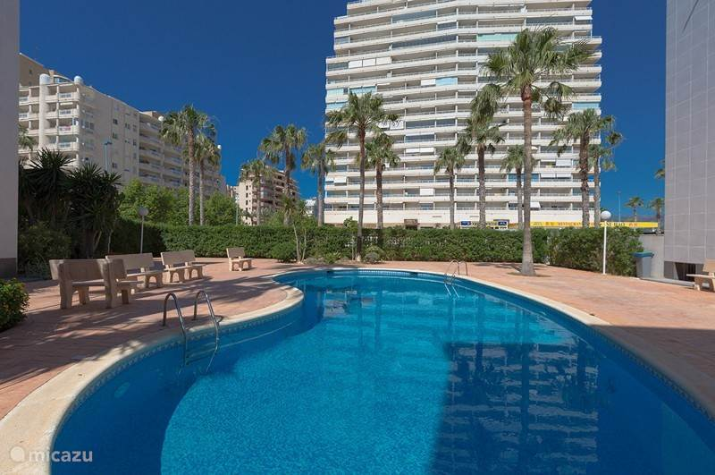 de tuin en zwembad van het appartementen complex