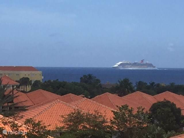 Cruiseboat aan de horizon