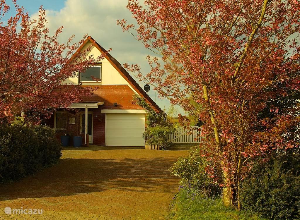 Haus Horizont im Frühling :)
