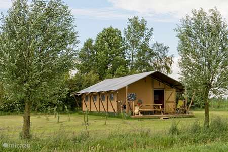 Vacation rental Netherlands, Groningen, Lettelbert glamping / safari tent / yurt At the Diepje 6persoons Safaritent