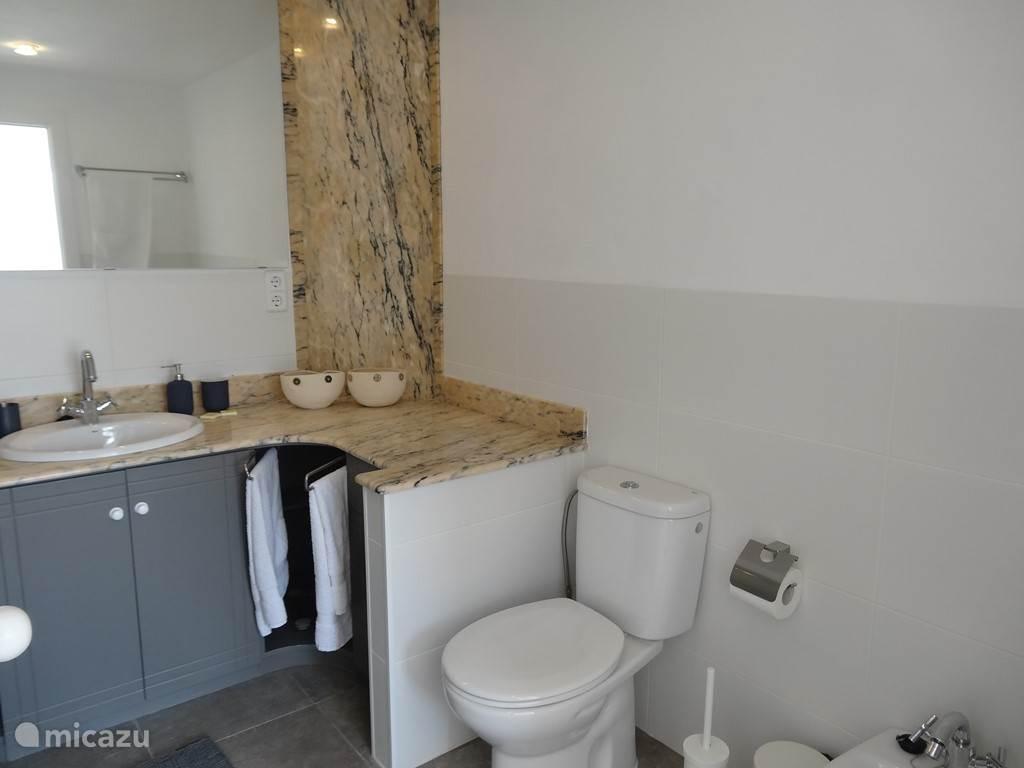 Badkamer 1, behorend bij dslaapkamer 1. Badkamer met grote douche, wastafelmeubel en toilet.