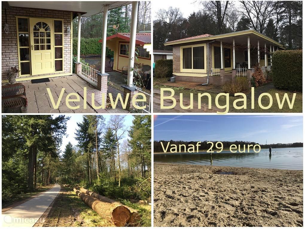 Veluwe bungalow bij Epe aan fiets routenetwerk 'de veluwe'.
