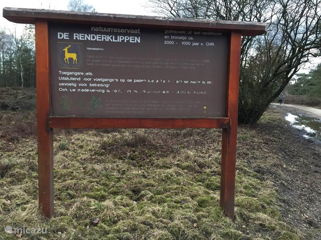 Diverse natuurgebieden omringen de camping, grote kans een everzwijn of hert te zien.