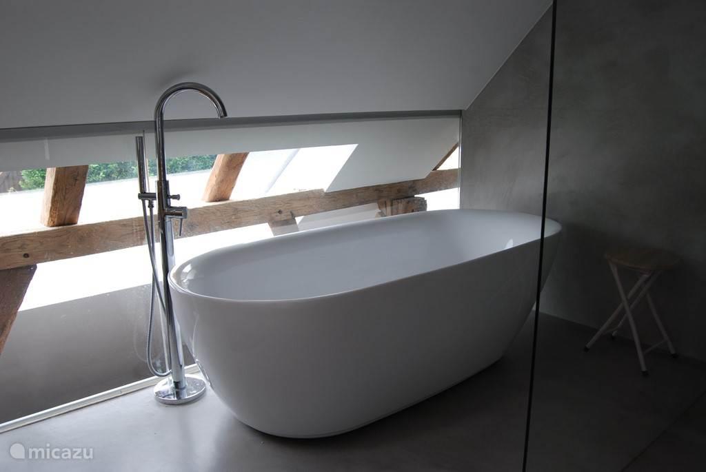 Badkamer met luxe bad.