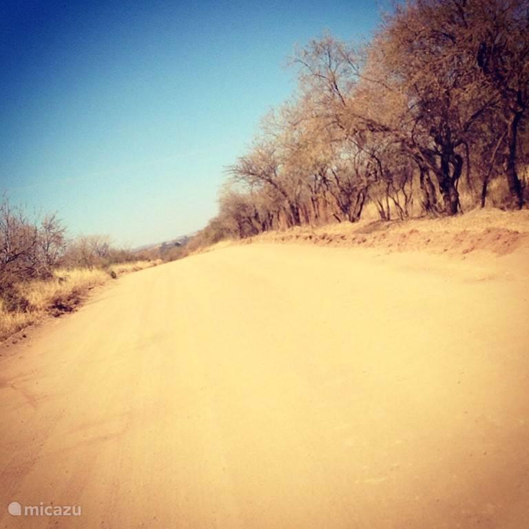 De weg naar Twiga House